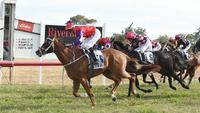 Rest up son, the 'Cups King' is up for Parkes challenge