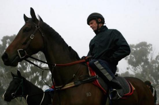 Trainer Danny Williams back at work in Guy and Wendy Walter's Goulburn stables