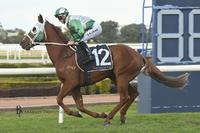 VOLPE WINS AT ROSEHILL SATURDAY 2ND JUNE