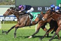 Danny Williams Pair On Road To The Kosciuszko (Saturday)