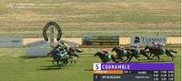 MY BLUE JEANS WINS BARADINE CUP IN COONAMBLE