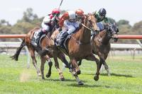 A Nice Maiden Double at Strathalbyn