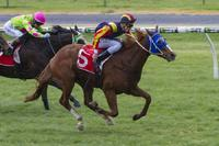 Hard Empire Wins at Morphettville