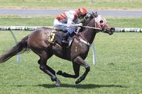 St Georges Vaults Breaks his Maiden on Cup Day