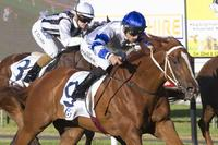 Kemalpasa Wins at Gawler Twilight