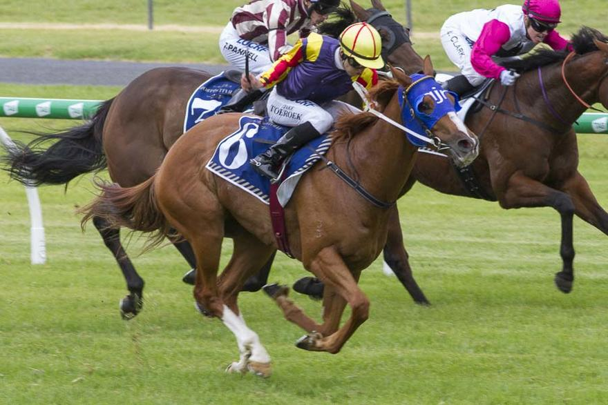 Hard Empire Wins the Group 3 R N Irwin Stakes
