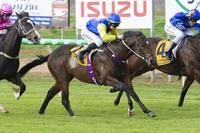 Another Race to Race Double at Balaklava