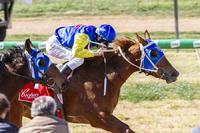 Another Double At Balaklava