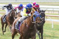 A Double in the Wet at Gawler