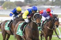 Dare To Dream Syndicates Celebrate Another Win