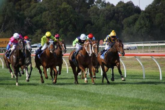 POT BLACK CLAIMS FIRST VICTORIAN WIN