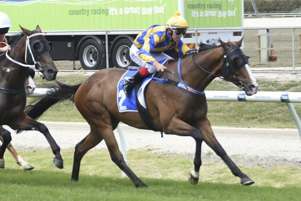BEL SIR NOTCHES UP HIS 10TH WIN AT YARRA VALLEY