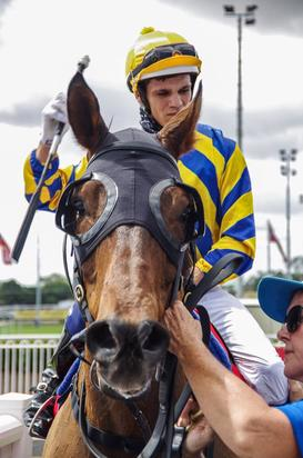 ARCTIC SONG SALUTES ON DAY 1 OF THE 2017 CARNIVAL