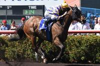 ARCTIC SONG BOLTS IN BY 9 LENGTHS ON CUP DAY 2017