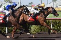 MORAL OUTRAGES NOTCHES 1ST WIN FOR STABLE
