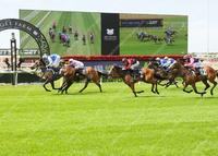 Stable to supply four runners to the Eagle Farm meeting Saturday