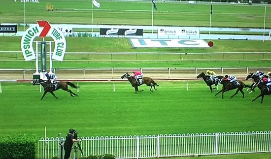 The Murwillumbah Trained Magic Diamond Scores A Dominant Win At Ipswich