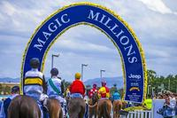 The TRJC Wishes Murwillumbah Trainer Matthew Dunn The Best Of Luck At The Gold Coast MM Day