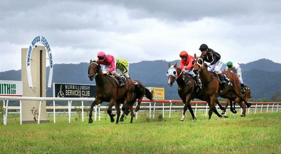 Final Fields For TRJC Murwillumbah Meeting On Sunday