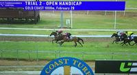 Local Perfect Dare Wins Trial At Gold Coast, After Country Championship Qaulifier
