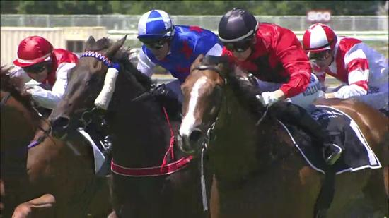 Morendi Remains Consistant For TRJC Trainer Darren Graham, With A Metro 2nd At Eagle Farm