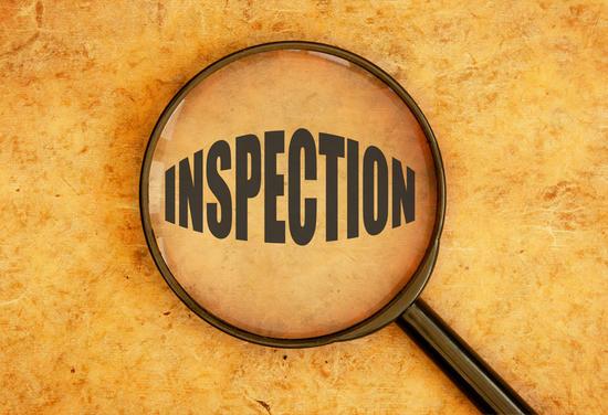 Stewards Make Inspection Of Murwillumbah (Racing Sunday)