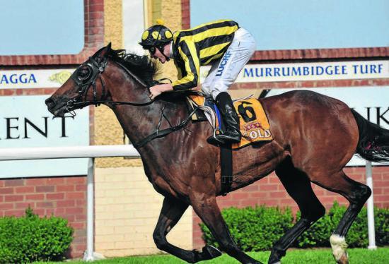 Art Thou Ready wins Stan Sadleir Stakes