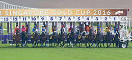 DESTER SINGAPORE GOLD CUP REVIEW 2016 VIDEOS AND PHOTOS