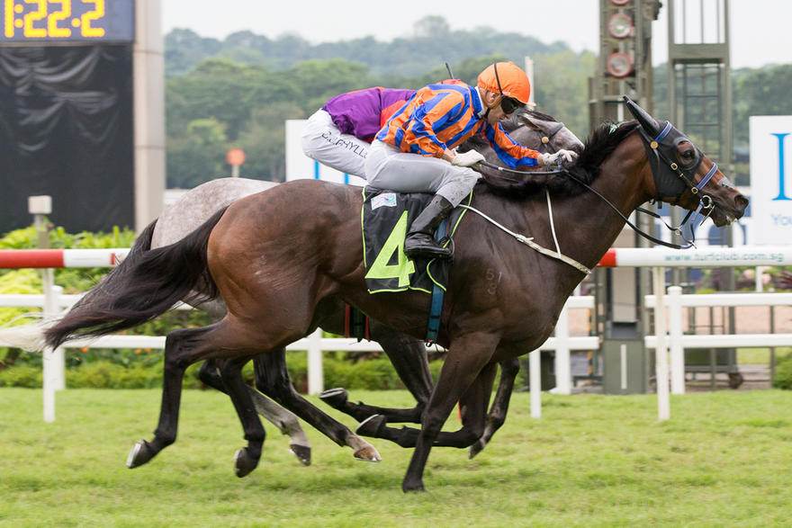 Prep for Gray's Gold Cup duo gets underway