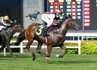 Kiwi owner holds Court for first time at Kranji