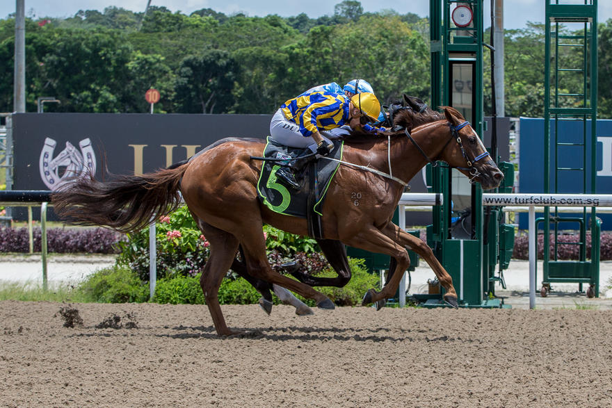 Debutant Heavenly Dancer lands from the clouds