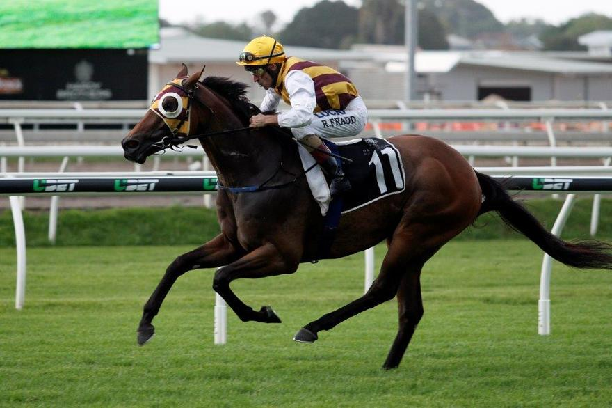 Most Important gives Gollan successive George Moore Stakes