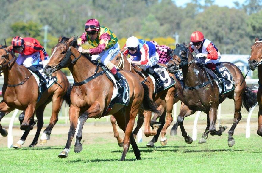 Tony Gollan hits Queensland ton