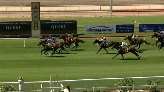 Lord Laurie Lands The Wagga Maiden Prize At Start Number 8