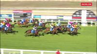Lord Laurie Runs 3rd At Wangaratta On Friday