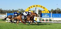 Craig Widdison To Compete With Two Runners At Bendigo On Wednesday