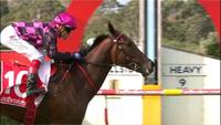Willi Willi To Be Partnered By Craig Williams At Sandown (Lakeside) On Wednesday