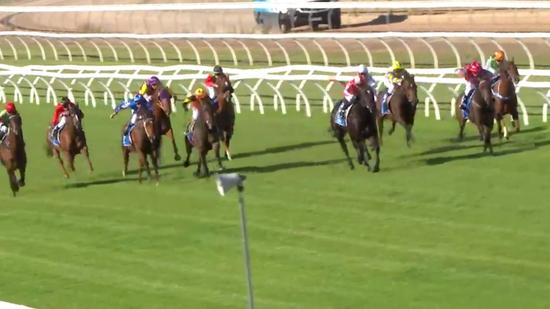 Cash Crisis Wins Two From Two At Wangaratta, Piloted By Nick Souquet