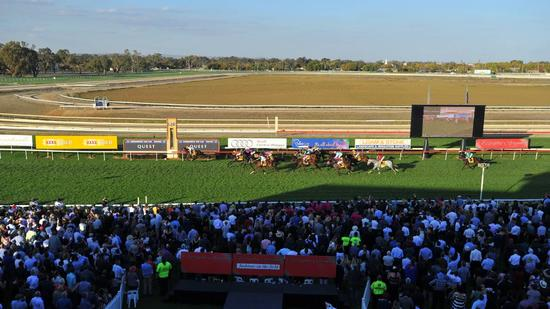 Stable Runners For Craig Widdison At Wagga On Friday