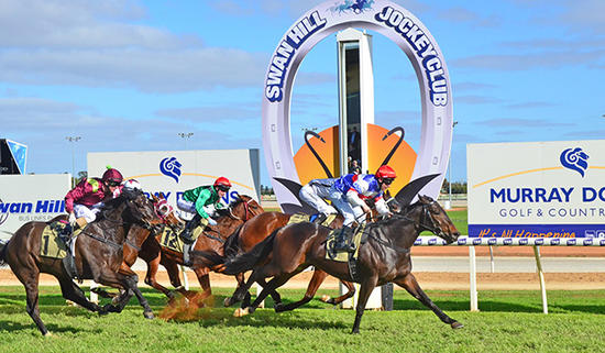 Craig Widdison To Supply Runners To Swan Hill On On Sunday