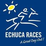 Stable Runners For Craig Widdison For Echuca On Monday