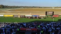 Christmas Eve Racing At The Wagga Murrumbidgee Course On Monday