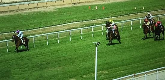 Baby Don't Cry Runs Third In The Whiz At Wagga