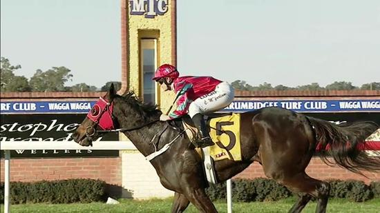 Baby Don't Cry Relishes The Heavy Track To Score By 3 At Wagga