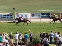Two Craig Widdison Runners To Compete At Corowa On Friday