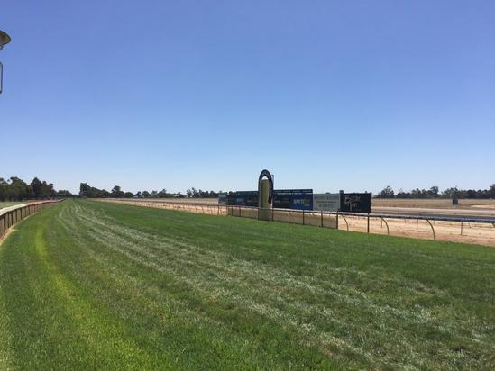 Steve's Choice To Compete At Echuca On Friday
