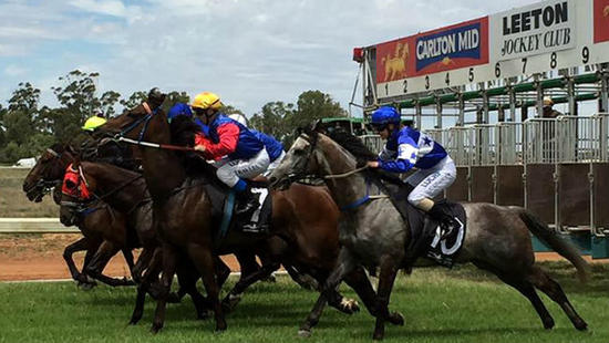Stable Runners For Leeton On Monday