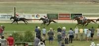Cash Crisis Runs An Unlucky 2nd At Corowa