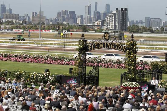 Willi Willi To Run At Flemington On New Years Day