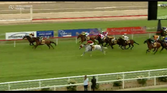 Fish Bones Fry Too Strong In Winning At Wagga